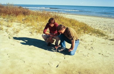 Examining the dunes at Kiawah Island.